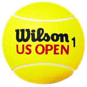 Balle Médium Wilson Roland Garros  - Diamètre: 25cm